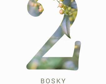 Bosky number set