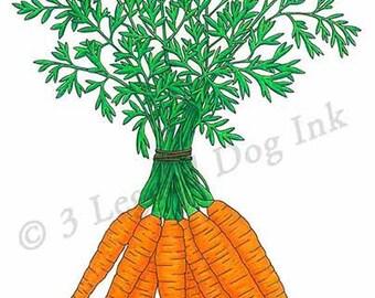 Carrots Vegetable Print
