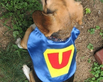 Superhero Pet Capes Custom Initial Dog Cat