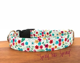 "The ""Spring has Sprung"" Collar"