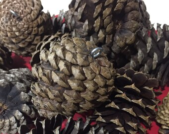 10 natural pinecones with screw eyes - Pinecones- Rustic wedding - Rustic Christmas- Bulk pinecones- Craft pinecones- pine cones