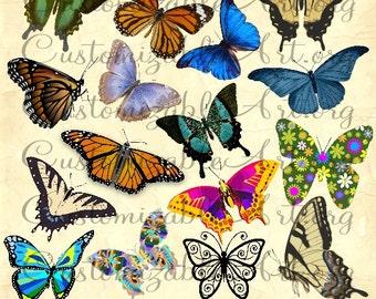 Butterfly Clipart Digital Butterflies Clip Art Cute Fun Colorful Butterfly Monarch Butterfly Garden Butterfly Clip Art Images Graphics