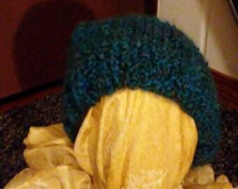 Sarcelle d'hiver fait chapeau