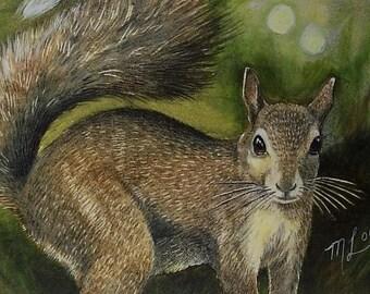 Squirrel Art Melody Lea Lamb ACEO Print Summer