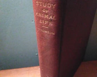 Antique 1896 The Study Of Animal Life By J. Arthur Thomson With Illustrations, Charles Scribner's Sons Publishing Co, 3rd Edition Book