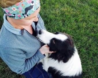 Border Collie headband