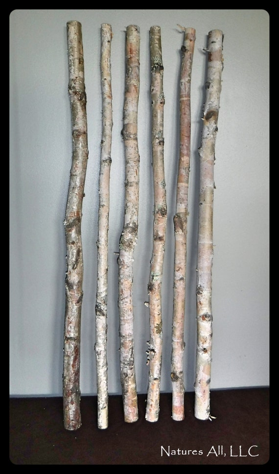 White Birch Sticks-30 Piece Value Pack/3 ft. Lengths/Decorative White Birch/White Birch Pole/Rustic Wedding And Home Decor