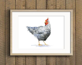 Fine Art Print of My Original Rootser Hen Bird Chicken  Watercolour Painting Signed A3 A4 Giclee High Quality Vibrant Impressionist Wildlife