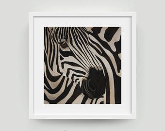 Limited Edition Zebra | Zebra | African Animals | Zebra Print | Zebra Illustration | Zebra Giclee | Zebra Painting | African Animal Print