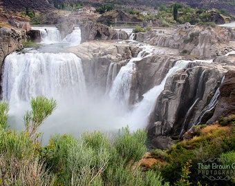 Shoshone Falls in the Spring Picture