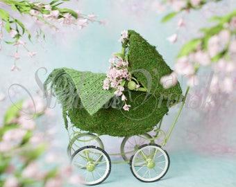 Digital Background/Prop Green Mossy Floral Stroller Digital Backdrop