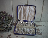 Set of 6 Silver plated te...