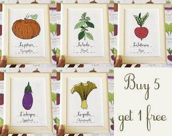 Kitchen Art Home Decor - Custom set of six 5x7 French Vegetables Fruits herbs plants art prints - Food Art - Eco Garden