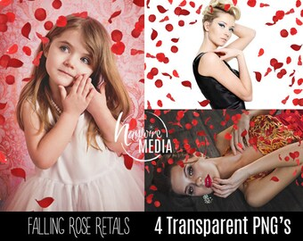 4 Transparent PNG Rose Flower Petals Falling Overlays - For a Romance or Wedding Effect