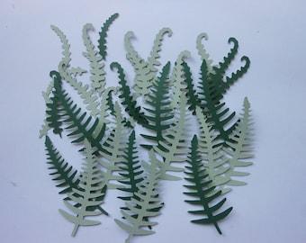 Die Cut Fern Leaves - cc