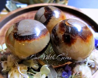 High Grade Septarian Healing Crystal, Palm Stone,  Ancient, Wisdom, Grounding, Visions, Messages, Calming
