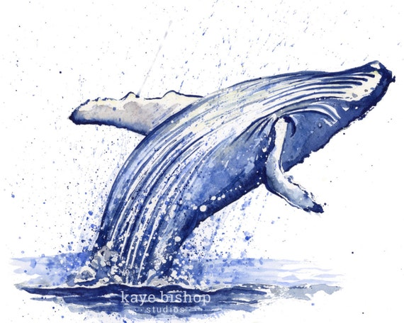 Pinterest Art Paintings Whales