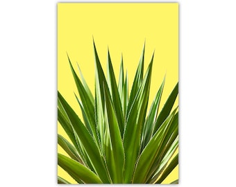 Cactus Print, SouthWest Decor, Mexican Wall Art, Yellow, Desert Plant, Large Canvas, Poster, Agave, Tequilla