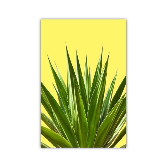 Cactus Print SouthWest Decor Mexican Wall Art Yellow