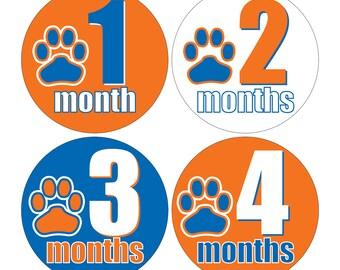 12 Monthly Baby Milestone Waterproof Glossy Stickers - Auburn University - Design M026-04