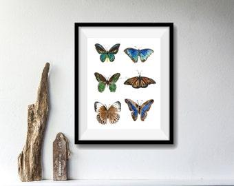 Butterflies art print, watercolor print, six butterflies print, nature art, wall art, butterflies art, nature art, butterflies, artwork