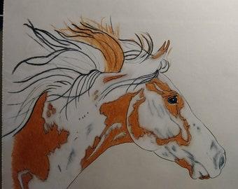 OOAK Original Paint Mustang Head Colored Pencil Drawing