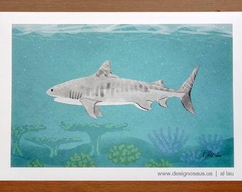 Tiger Shark (13 x 19)