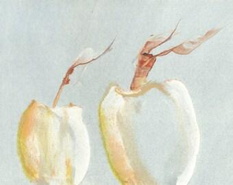 Vessel Watercolor#41 7x10