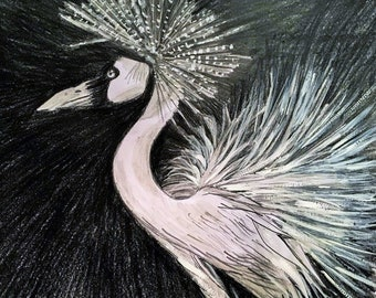 Stork crest graphite and gouache - print