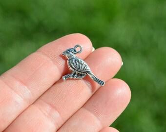 5  Silver Tone Cardinal Bird Charms SC3651