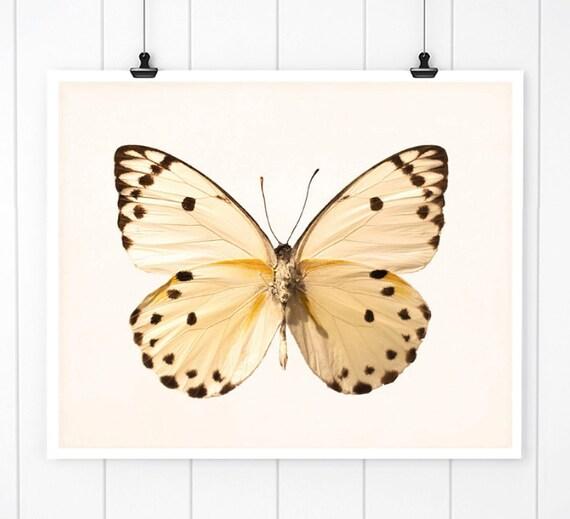 Butterfly wall art butterfly print bathroom decor nursery