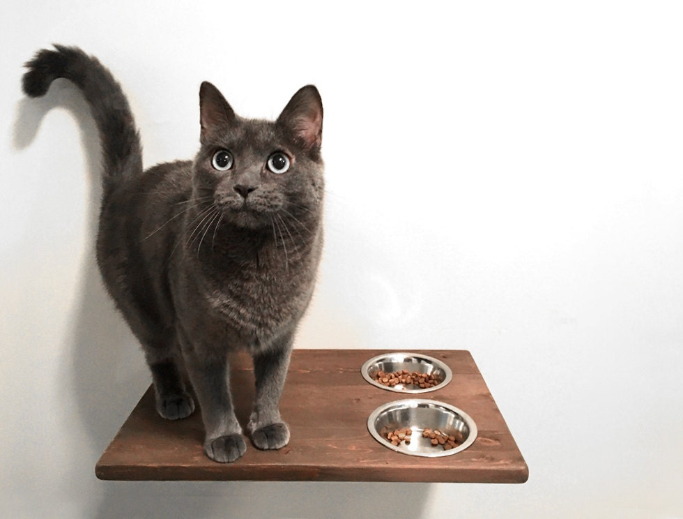 Wall Mounted Cat Feeder Cat Food Bowls Food Station Cat