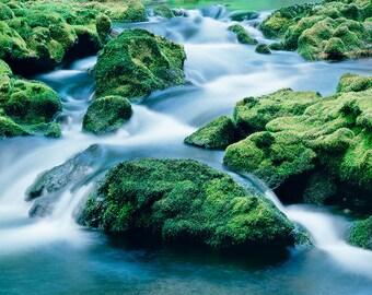 Umpqua River matted fine art archival print