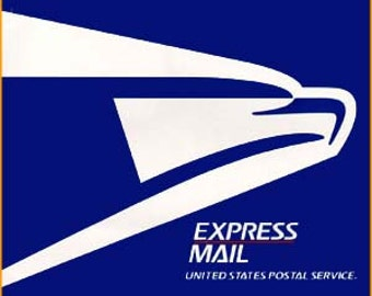 Domestic Overnight Express Mail Upgrade - Small Order Less than 500USD