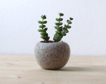 Felt planter / hygge decor / felted bowl / Succulent pod / scandinavian decor / minimalist home decor /air plant vase