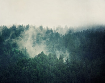"""Forest Print, Landscape Photography Print, Large Wall Art Print, Foggy Landscape Print, Outdoor Gift, Fine Art Photography """"Savage Beauty"""""""