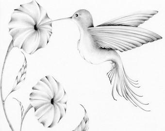 Hummingbird Drawing Giclee Fine Art Print of my Original  Pencil Drawing  Artwork Winter Woodland Hummingbird Pencil Drawing Bird Art Print