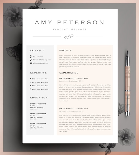 Professional CV Curriculum Vitae 2 Page Resume Simple