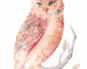 """Owl Watercolor- Pink and Salmon Owl - 11 x 17"""" Archival Print"""
