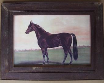 Farm Animal Horse Print Reclaimed Print Wood Frame HS1