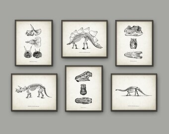 Dinosaur Print Set Of 6 - Dinosaur Skeleton - Prehistoric - Geology Student - Paleontology - Fossil Book Plate Illustration - Boys Bedroom