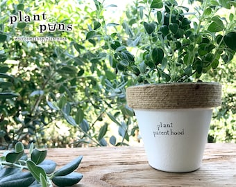 """4"""" Plant Parenthood » Plant Indoor and Outdoor Pot or Planter"""
