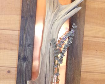 copper frame and Driftwood with vase