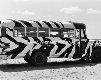 Zebra Bus - Black and White Photograph - 5x7 print