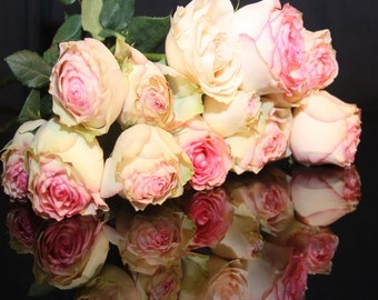 Classic Rose Fragrance Oil Low Shipping