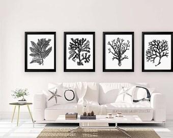 Black White Coral Wall Art, White Black Coral Print, Black White Wall Art, Black White Home Decor, Coral Print, Set of Four Prints
