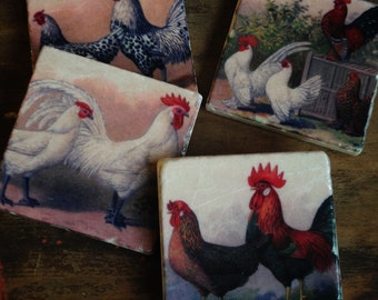 Chickens - stone coaster set