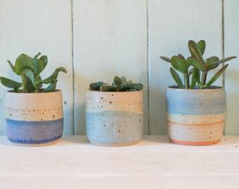 Speckled Mini Planter // Succulent Planter // Plant Stand // New Home // Plant Pot // Indoor Plant // Plants //Boyfriend // Girlfriend //