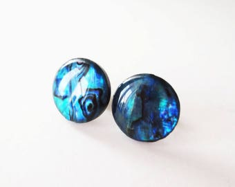 Blue paua shell earrings.  Blue abalone earrings.  Extra large paua earrings.  Paua shell stud.  15mm earrings.  Dark blue earrings.
