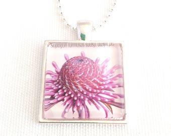 flower necklace, postage stamp pendant, Australian native rose coneflower, 2015
